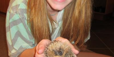 Kathern Beard w Hedgehog